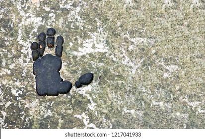 Monkey foot print
