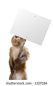 Monkey holding a sign with whatever you want!