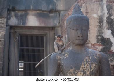 Monkey on Statue