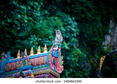 the monkey sits at the roof Batu Temple, Malaysia