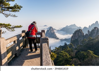 Monkey watch sea cloud ,Mt. Huangshan in Anhui, China
