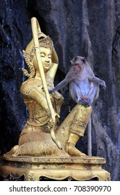 Monkeys in the temple. Thailand.