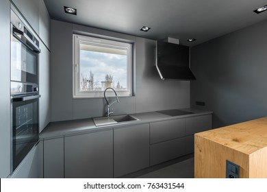 Monochromatic gray contemporary kitchen with modern inox equipment