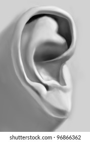 Monochrome digital drawing of a plaster ear in academic technique