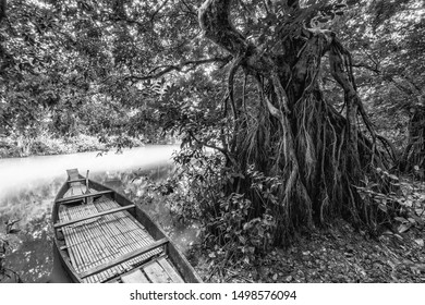 A monochrome, filtered view of a fishing boat moored alongside the large roots of a fig tree on a riverbank of a rural waterway in Asia.