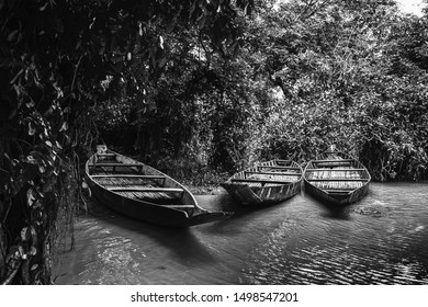 A monochrome, filtered view of fishing boats resting in dark undergrowth on a rural waterway.