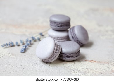 Monochrome gray macaron or macaroon on concrete background, almond cookies with different fillings (chocolate, caramel). Selective focus