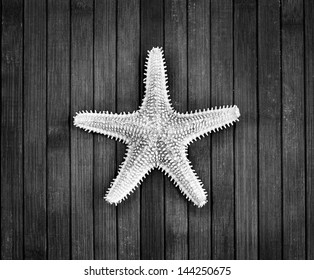 Monochrome image of spiked sea-star on a wooden background.