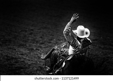 Monochrome rodeo cowboy in a white hat riding a bronco in the spotlight