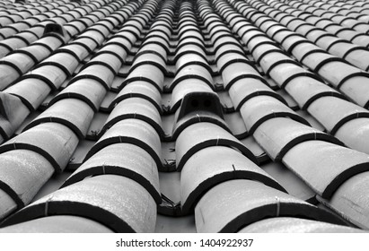 a monochrome toned perspective view of traditional curved Portuguese style overlapping rows of roof tiles