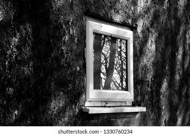 Monochrome UPVC white window on derelict building awaiting demolition with reflection of trees in glass