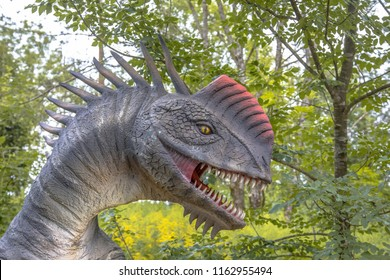 Monolophosaurus is a genus of tetanuran theropod dinosaur from the Middle Jurassic Shishugou Formation in what is now Xinjiang, China.