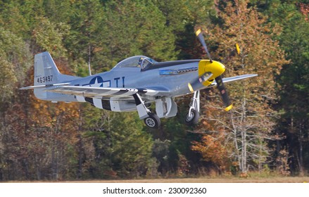 MONROE, NC - NOVEMBER 8, 2014:  A P-51 Mustang Fighter Performing at the Warbirds Over Monroe Air Show in Monroe, NC.