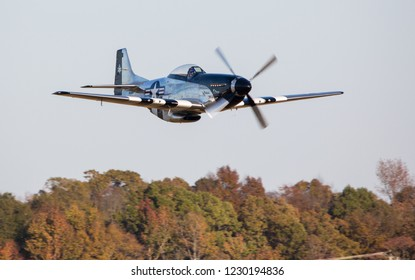 MONROE, NC (USA) - November 10, 2018: A P-51 Mustang fighter flies low over trees during the Warbirds Over Monroe Air Show.