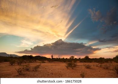A Monsoon Storm Passes Across the Desert at Sunset.