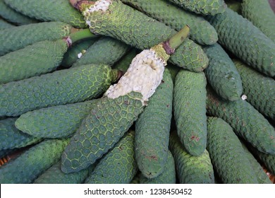 Monstera deliciosa known as ananas - banana for sale on local market in Funchal, Madeira, Portugal. Concept of exotic unusual tropical fruit, fruit background