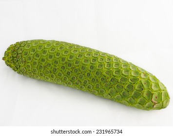 Monstera deliciosa. Monster fruit. The Fruit Salad Plant isolated on the white background