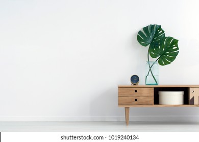 Monstera leaves in glass vase on wooden cupboard against white wall with copy space in empty room interior