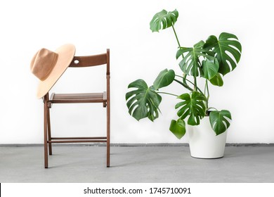 Monstera or Swiss Cheese plant in white flower pot standing on wooden stand and Camel color hat on a wooden chair on a light background. Modern minimal creative home decor concept, garden room
