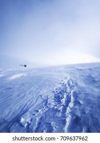 Mont blanc Hiking.