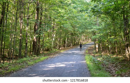 Mont Saint Bruno, Quebec - September 7, 2018 - Horizontal forest landscape with walking paths and woman biking on the trail