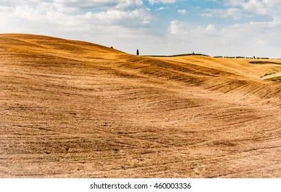 MONTALCINO, SIENA, JULY 22, 2016 -  hills with ancient farmhouses and Tuscan cypress trees in the county of Montalcino in the province of Siena famous for the production of the precious Brunello wine