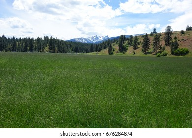 Montana's rugged Bitterroot Mountains provide a beautiful background for the valley by the same name, including Trapper Peak.