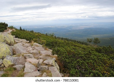 Montane zone, view from the edge. Scenery seen from above. Aerial view from peak. Hike in the mountains. Rocky trail, path leading to unknown. Sport recreation beautiful weather.