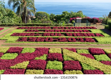 Monte (Funchal), Portugal - September 18, 2018: View over Jardim Botanico garden - very famous garden on Madeira
