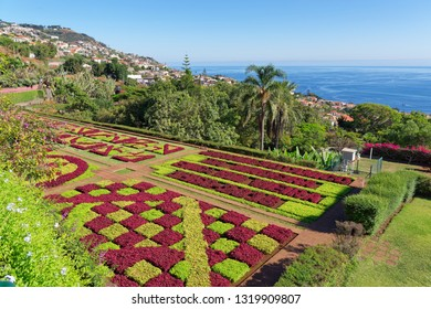 Monte (Funchal), Portugal - September 18, 2018: View over Jardim Botanico garden - famous nature garden on Portuguese island of Madeira