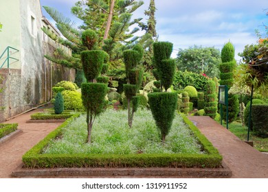 Monte (Funchal), Portugal - September 18, 2018: Decorative plants in Jardim Botanico Garden on Portuguese island of Madeira