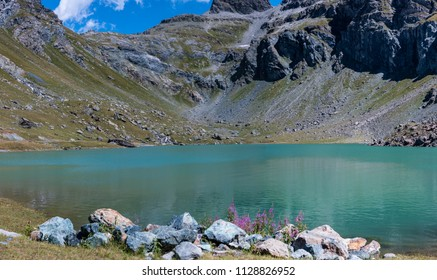 Monte Rosa Massif, Aosta Valley, Italy. Lake Gabiet (Gressoney Valley), with flowers and stones in foreground.