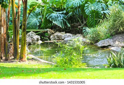 Monte-Carlo, Monaco – June 13, 2014: lake in the gardens of little Africa near the casino and the opera house