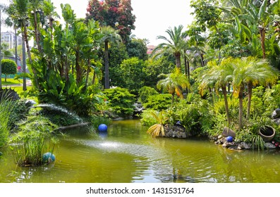 Monte-Carlo, Monaco – June 13, 2014: the lake in the gardens of little Africa near the casino and the opera house