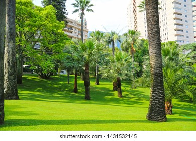 Monte-Carlo, Monaco – June 13, 2014: the gardens of little Africa near the casino and the opera house