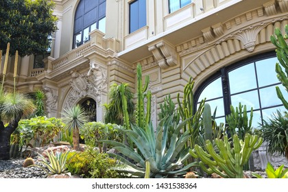 Monte-Carlo, Monaco- June 13, 2014:  tropical southern plants in the park near the opera house and casino