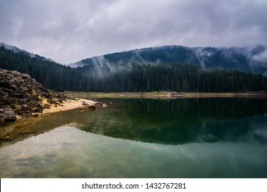 Montenegro, Rocky beach of black lake reflecting foggy trees and forest in calm waters in perfect paradise like nature landscape of durmitor national park near zabljak