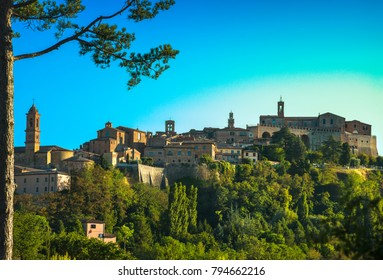 Montepulciano italian medieval village and pine tree. Siena, Tuscany Italy Europe.