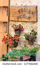 Montepulciano, Tuscany, Italy - September 09, 2018: Montepulciano Old Town - Plant Decoration in front of Restaurant
