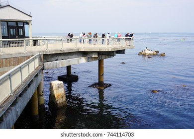 MONTEREY, CA -4 SEP 2017- The landmark Monterey Aquarium building in Monterey, California, focusing on regional aquatic life.