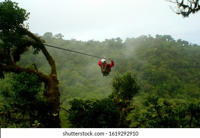 Monteverde, Costa Rica, august 2010. A tourist riding the zip line over a canyon of deep cloud forest at Monteverde.