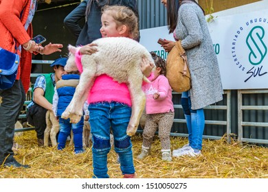 MONTEVIDEO, URUGUAY, SEPTEMBER - 2019 - Girl playing with baby sheep at traditional rural exhibition at prado neighborhood in montevideo city, uruguay