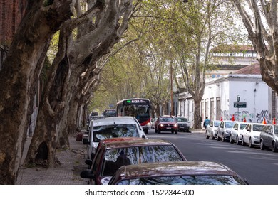 MONTEVIDEO, URUGUAY - September 2019: Streets of Montevideo covered with trees