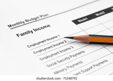 Monthly budget plan - family income