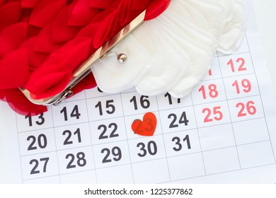 monthly menstrual cycle. female calendar. women health and physiology