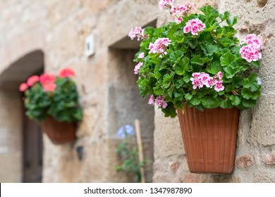 Monticchiello, Italy town or village city in Tuscany closeup of window door and pink flower pots decorations on summer day with nobody stone wall architecture