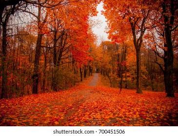 montreal autumn
