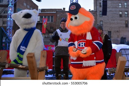 MONTREAL CANADA 01 06 17: Mascot Youppi! and Polar bear at the kick off of 375 anniversary of Montreal city celebrations in 2017 in collaboration with public and private partners