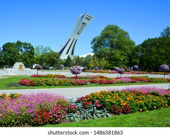 MONTREAL CANADA 08 21 2019 : Montreal botanical garden is considered to be one of the most important botanical gardens in the world in background the olympic stadium tower