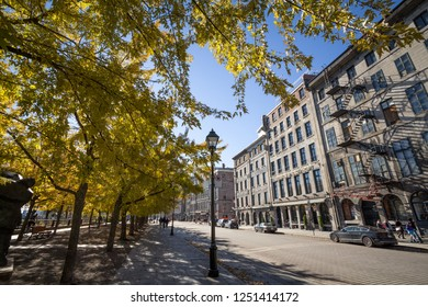 MONTREAL, CANADA - NOVEMBER 4, 2018: View of Old Montreal seafront, or Vieux Montreal, Quebec, in the autumn, with its yello leaves trees and stone buildings on Rue de la Commune street